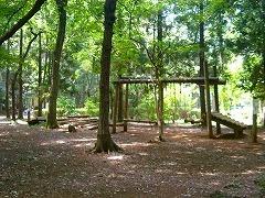 千葉県立船橋県民の森,千葉,アスレチック,公園