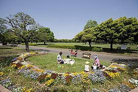 岸根公園,アスレチック,神奈川,