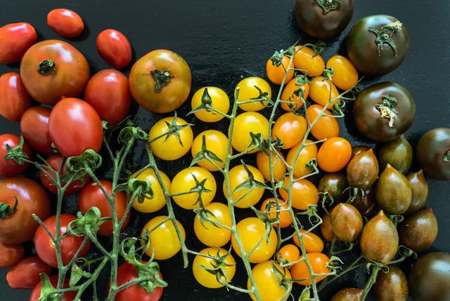 いろいろなトマト,離乳食,中期,トマト