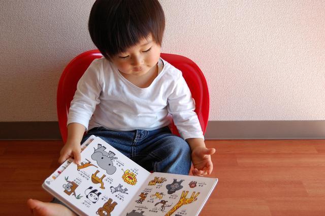 2歳の男の子と絵本,絵本,2歳,