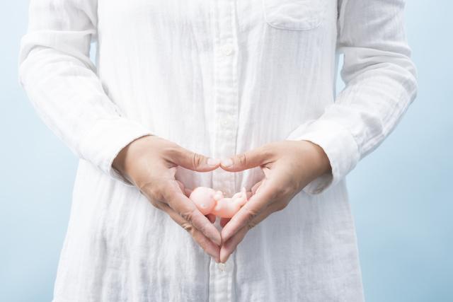 母体と胎児のイメージ,ノンカフェイン,お茶,妊婦