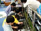 地域防災施設 鶴見川流域センターの水族館,水族館,神奈川県,おすすめ