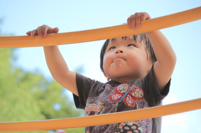 アスレチックで遊ぶ子ども,おもちゃ,2歳,