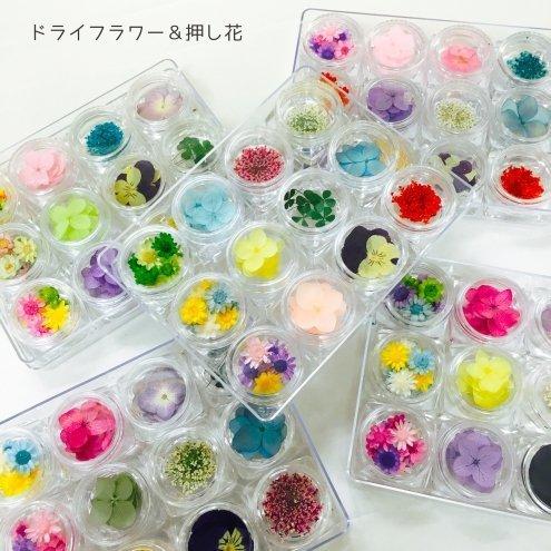 GreenOcean おまかせ12種(^^) お花いっぱい 押し花・ドライフラワーセット,手作り,スマホケース,