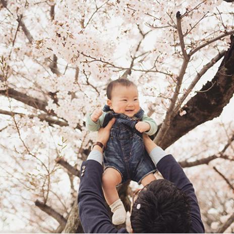 お花見する赤ちゃん,子ども,記念撮影,