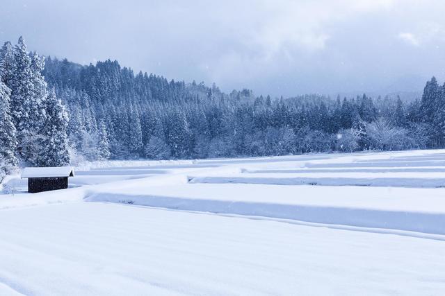 冬の湿原,ベビーパジャマ,