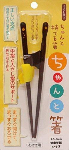 イシダ 箸の持ち方矯正 ちゃんと箸 こども用 16.5cm 右利き,子ども,箸,おすすめ