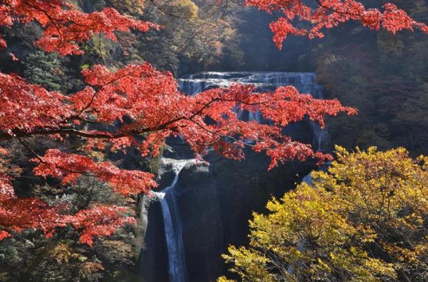袋田の滝,茨城,紅葉,スポット