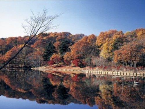 北山公園の秋,茨城,紅葉,スポット