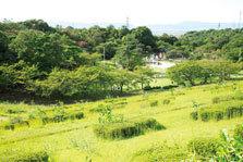 山城総合運動公園の遊びの森,京都,おすすめ,スポット