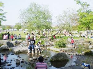梅小路公園の河原遊び場,京都,おすすめ,スポット