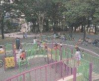 南河原公園,公園,水遊び,神奈川