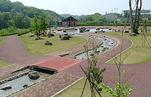 中井中央公園の水辺の広場,公園,水遊び,神奈川