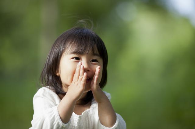 前世の記憶を話す子供,胎内記憶,