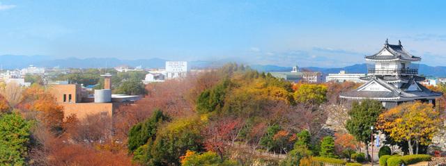 浜松城公園,静岡,紅葉,スポット
