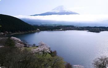 田貫湖,静岡,紅葉,スポット