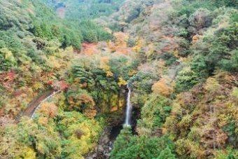 須津川渓谷,静岡,紅葉,スポット