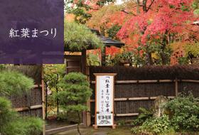 成田山公園 紅葉まつり,千葉,紅葉,スポット
