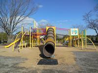 日高総合公園大型遊具,埼玉県,アスレチック,公園