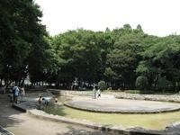 伊佐沼公園,埼玉県,アスレチック,公園
