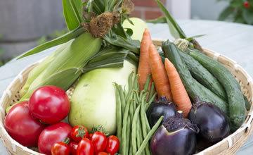 カゴ盛りされた新鮮野菜,長野,道の駅,