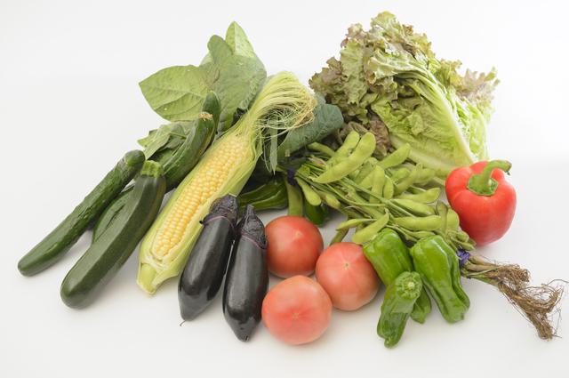 夏野菜,オートキャンプ牧場,チロル,