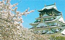 大阪城公園,大阪,花見,名所