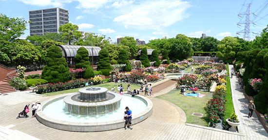 江戸川区総合レクリエーション公園,東京,公園,おすすめ