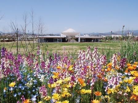 花菜ガーデン(県立花と緑のふれあいセンター),秋,果物狩り,関東