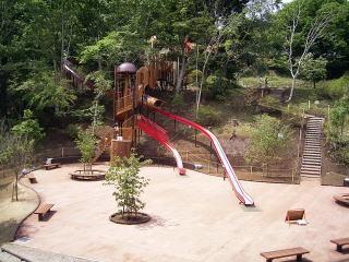 昭和の森公園のアスレチック,関東,紅葉,スポット