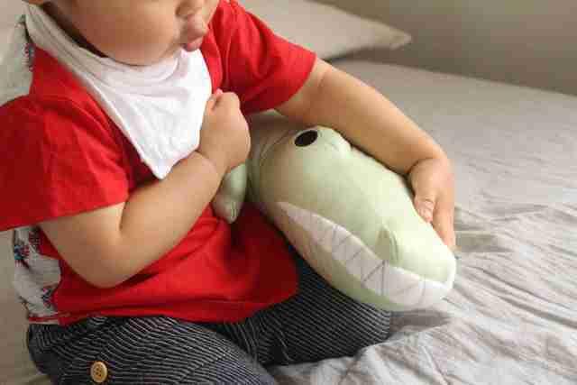 ワーニー抱き枕,ニトリ,Nクール,