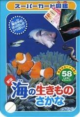 海の生きもの・さかな,生き物,図鑑,おすすめ