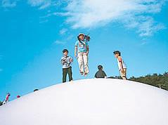 国営武蔵丘陵公園,紅葉,関東,子ども