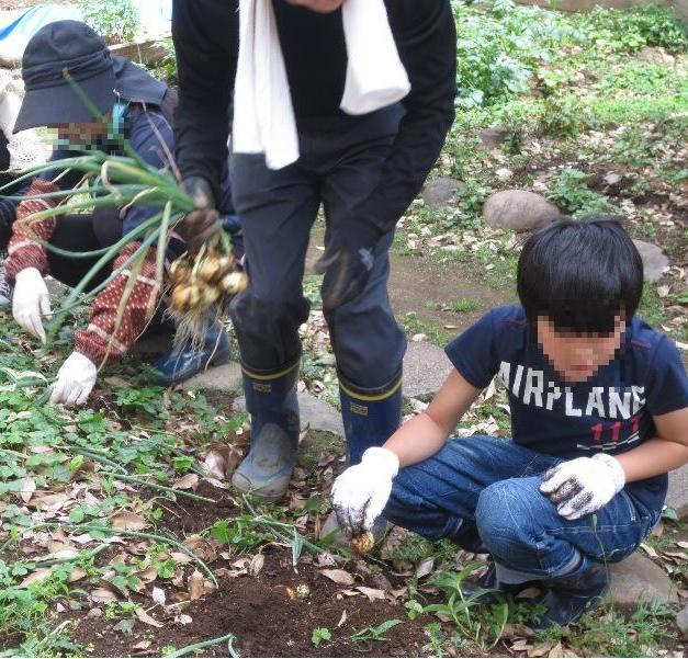 大原社会教育会館,都内,子ども,農業体験