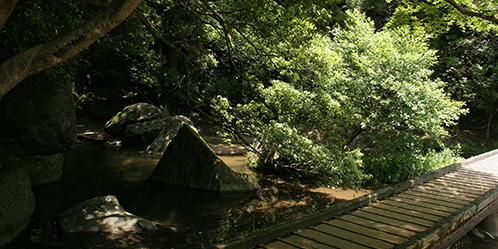 王滝渓谷,バーベキュー,食材,愛知
