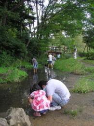 水の森公園キャンプ場,宮城県,川遊び,公園