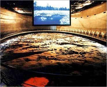 地底の森ミュージアム,宮城県,博物館,子連れ