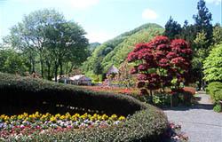 秋保大滝植物園,宮城,植物園,子連れ