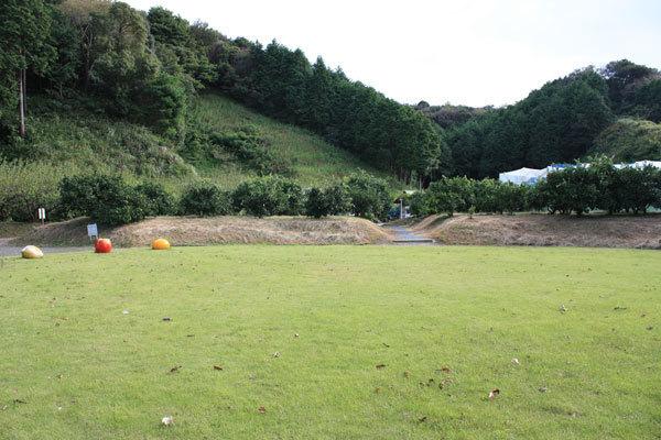 森林果樹公園,新幹線,静岡,掛川