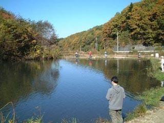 高萩ふれあいの里フィッシングエリア,茨木,釣り,ビギナー