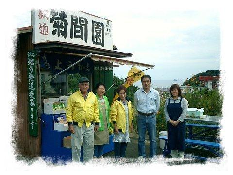 菊間園,みかん狩り,静岡,おすすめ