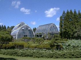大崎園芸植物園,植物園,埼玉,おすすめ