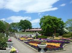 挟山市都市緑化植物園,植物園,埼玉,おすすめ