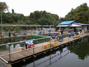 笹下つりぼりセンター,子連れ,釣り,神奈川