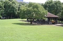 平和島公園,アスレチック,公園,大田区