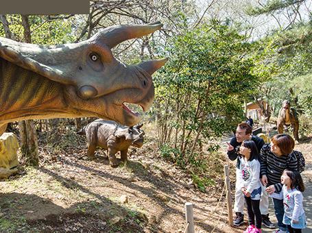 恐竜が棲む森 伊豆アニマルキングダム,動物,伊豆,アニマルキングダム