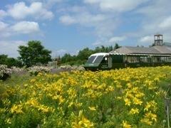 札幌市緑化植物園 百合が原公園緑のセンター,おすすめ,北海道,植物園
