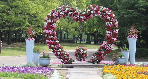 大阪市立 長居植物園,花,植物園,大阪