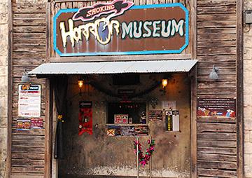 サファリリゾート姫路セントラルパーク ショッキングホラーミュージアム,避暑,怖い,お化け屋敷