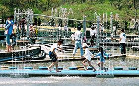 国営越後丘陵公園,新潟,水遊び,公園